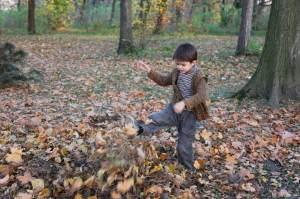 Victor şi frunzele
